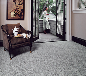 Modern Karastan carpet available for professional installation now at Florence Carpet & Tile.