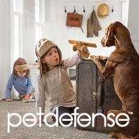 Pet Defense carpet exclusively at Abbey Carpet & Floor